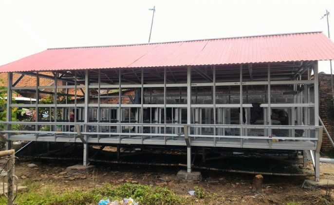 Kandang usaha ternak kambing panggung baja ringan